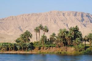 A Nile Island