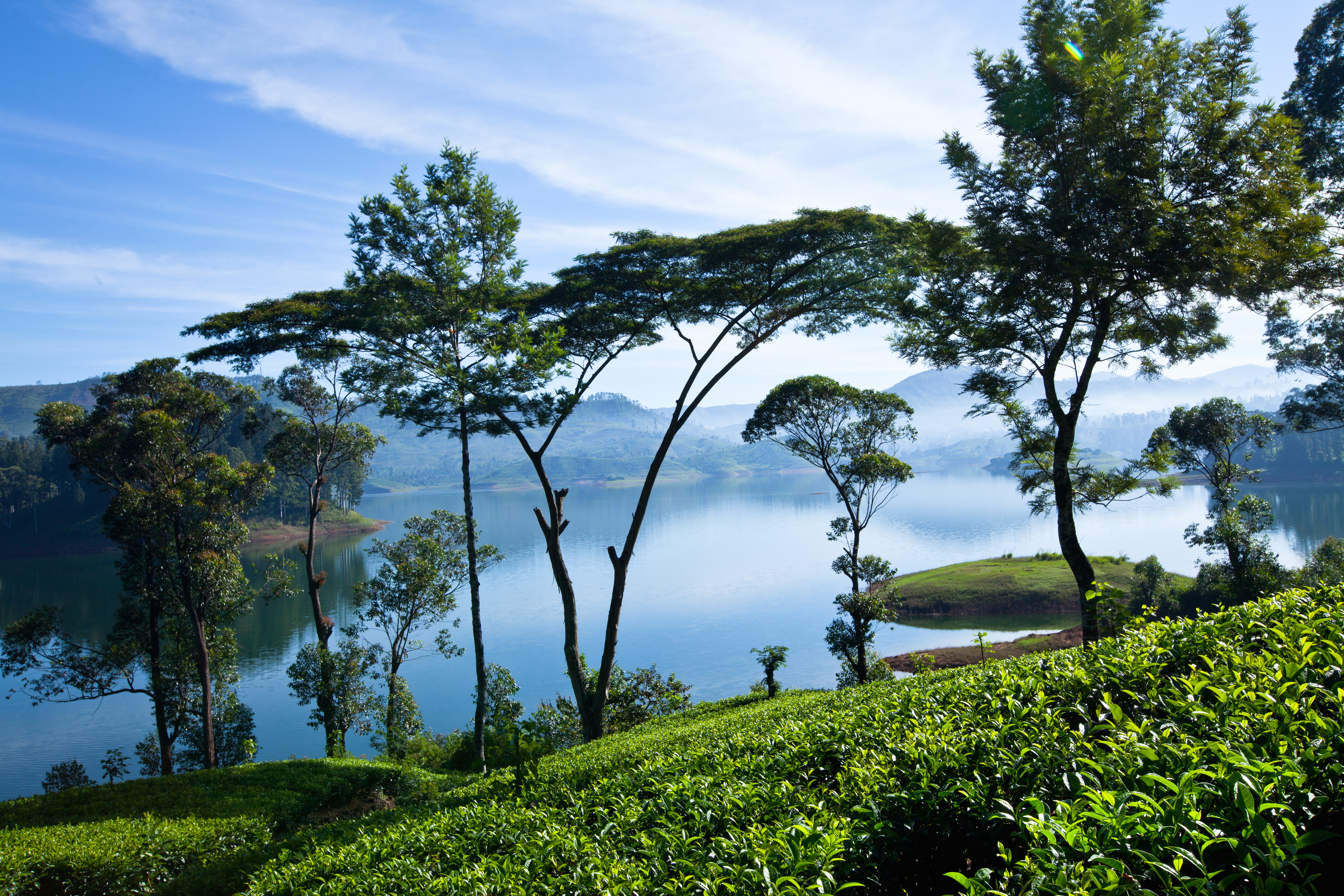 Tea Country | Tailor Made Holiday to Sri Lanka