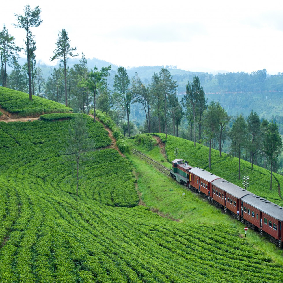 Scenic Train journey | Tailor Made holiday to Sri Lanka