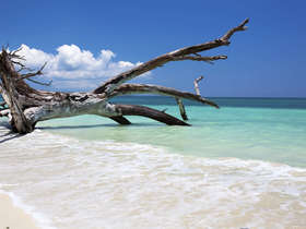 Our tailor-made Andaman Islands tours reveal the highlights of these remote islands.