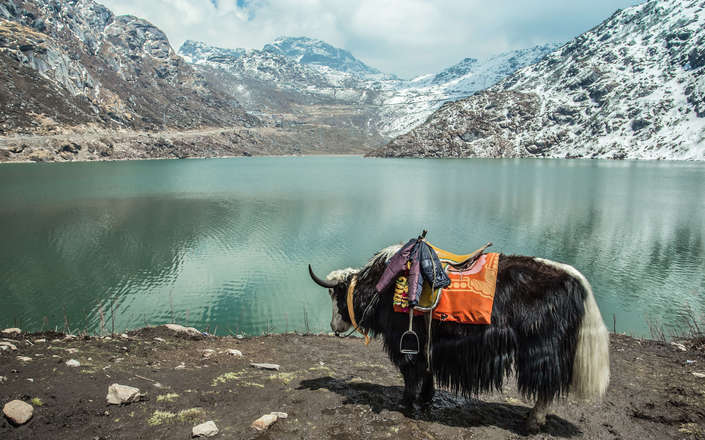 Visit Lake Tsomgo in East Sikkim on a tailor made holiday to North East India
