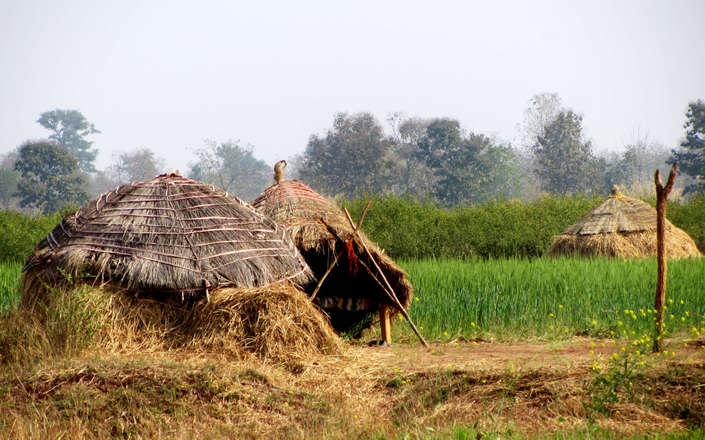 Visit rural India on a tailor-made holiday to north India