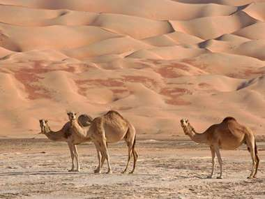 Visit the Empty Quarter on a luxury tailor-made holiday to Oman