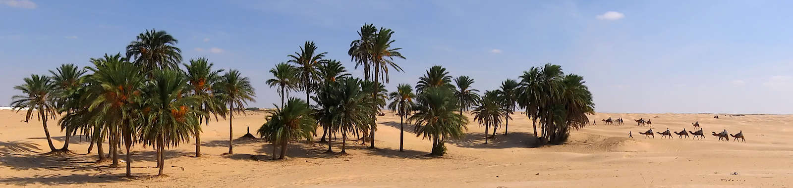 Visit southern Tunisia on a luxury holiday to the Anantara Resort in Tozeur